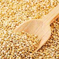 Quinoa Blanca Lavada